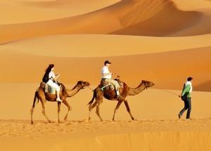 Atlas Mountains, Kasbahs and Sahara desert