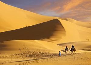 Sahara Desert & Marrakech Tour from Fes