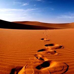 Morocco Adventure Tours & Desert experience